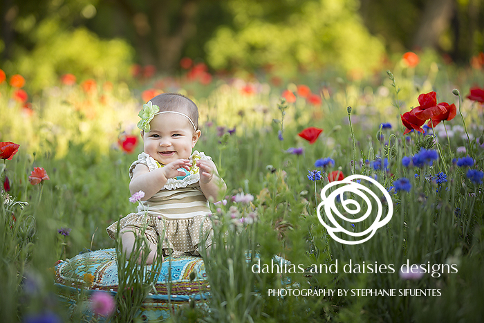 Dallas Baby and Family Photographer