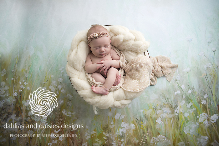 Highland Park Newborn Photographer