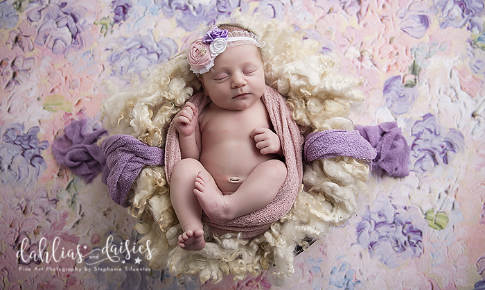 Allen Newborn Photographer